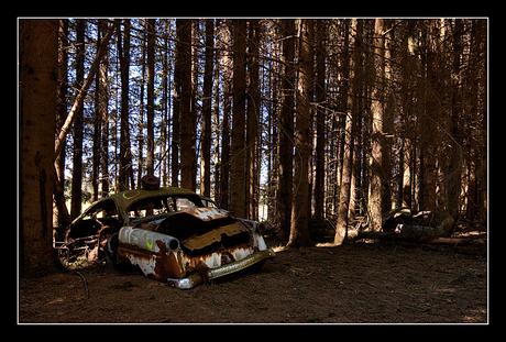 Car Graveyard 3