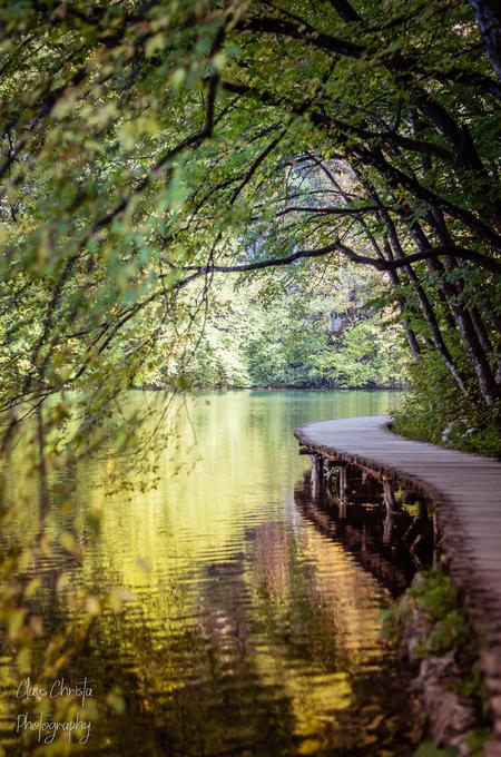 Follow the path - Plitvice - foto door Christa66 op 14-04-2021 - locatie: Kroatië - deze foto bevat: plitvice, kroatië, water, herfst, meer, bos, steiger, water, fabriek, blad, natuurlijk landschap, hout, fluviatiele landvormen van beken, afdeling, vegetatie, zonlicht, kofferbak