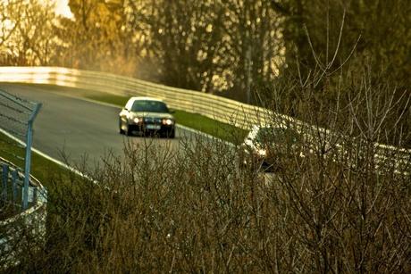 Natuur en de Nürburgring