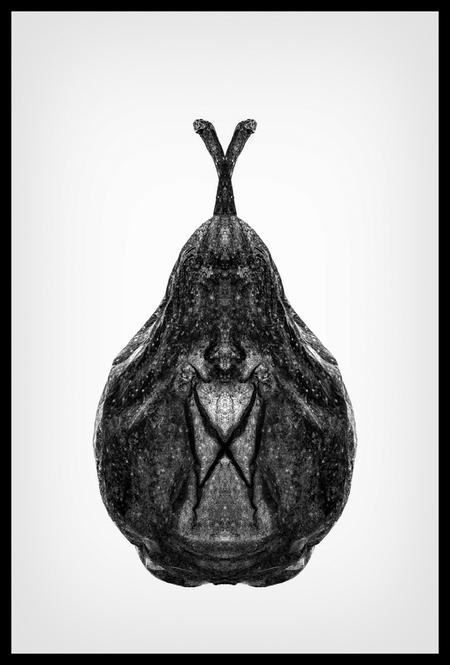 Twisted Pear - een gespiegelde versie,bewerking in photoshop,  van een peer - foto door corritmeester op 01-03-2013 - deze foto bevat: fruit, peer, vrucht, symmetrie, symmetry, pear
