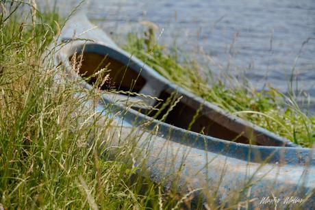 zomer in Fryslân