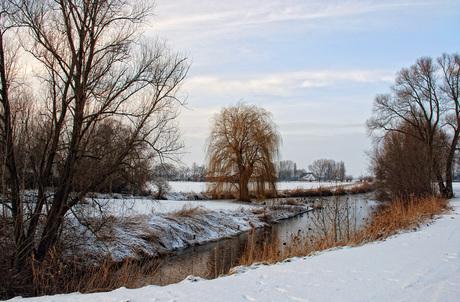 Winters Brabant
