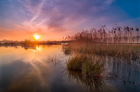 heerlijk rustig biesbosch