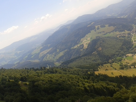scharzwald 2014