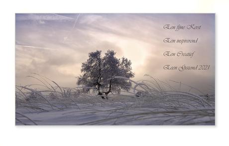 Kerst en Nieuwjaars wens