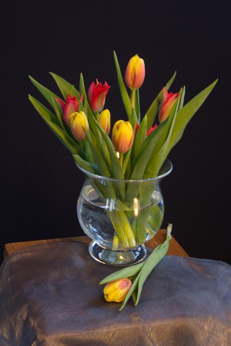 Vaas tulpen