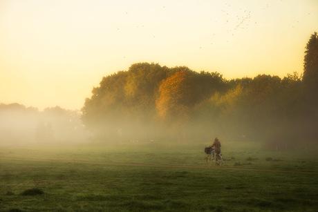 autumn morning biking