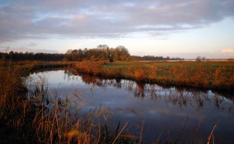 Friesland in de morgen 1.jpg