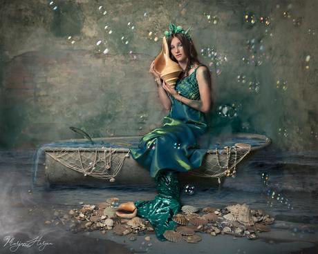 Every seashell has a story