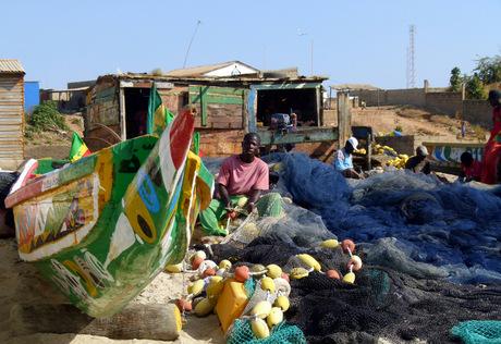 gambia tanji vismarkt 2