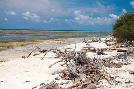 Strand op Gili Trawanang