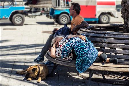 relaxed - - - foto door duipmans op 31-08-2015 - deze foto bevat: man, vrouw, straat, hond, luieren, ontspanning, bankje, liggen, tilburen.nl