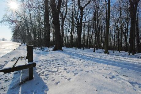 Park Overbosch