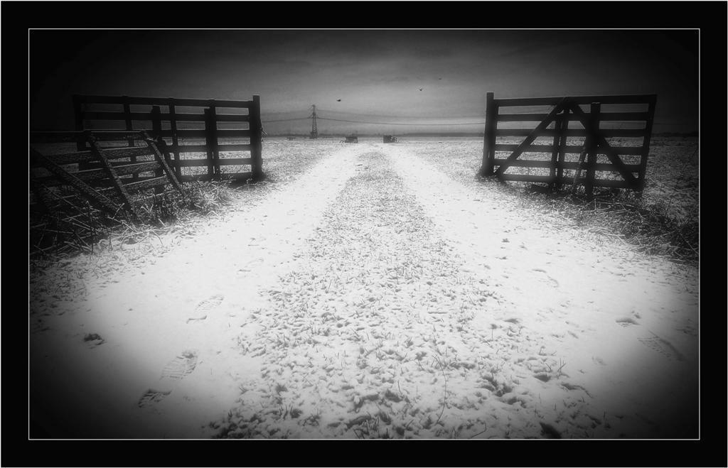 Hek... - Dit is een foto van vorige week. De laatste dag dat er nog wat sneeuw lag. Dus voorlopig ook de laatste sneeuwfoto...  Ik vond het hek wel leuk en  - foto door Foto_Marleen op 14-02-2009 - deze foto bevat: hek, natuur, sneeuw, landschap, voetsporen, zwart-wit, foto-marleen