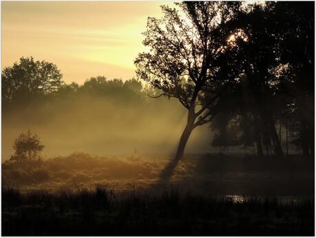 Herfst in Twente