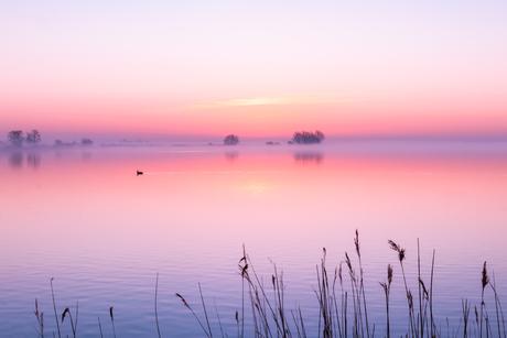 Silence morning