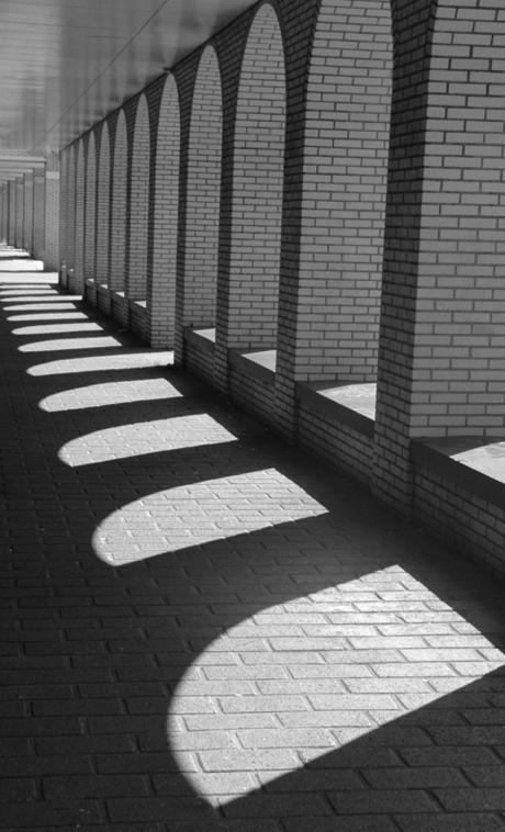 Daylight Shadow