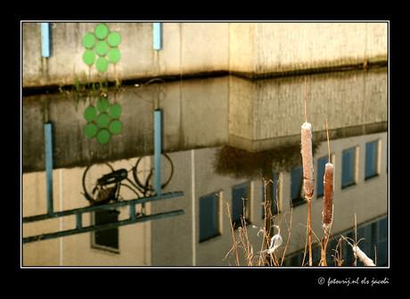 stadsgracht