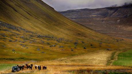 IJsland -35-