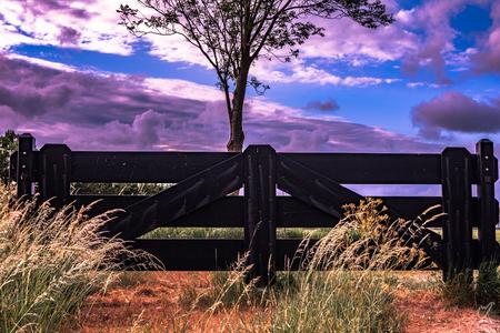 gelukkig hangt de lente in de lucht - - - foto door wardkeijzer op 02-03-2021 - deze foto bevat: lucht, wolken, kleur, lente, licht, avond, lijnen, zonsondergang, landschap, voorjaar, bomen, polder