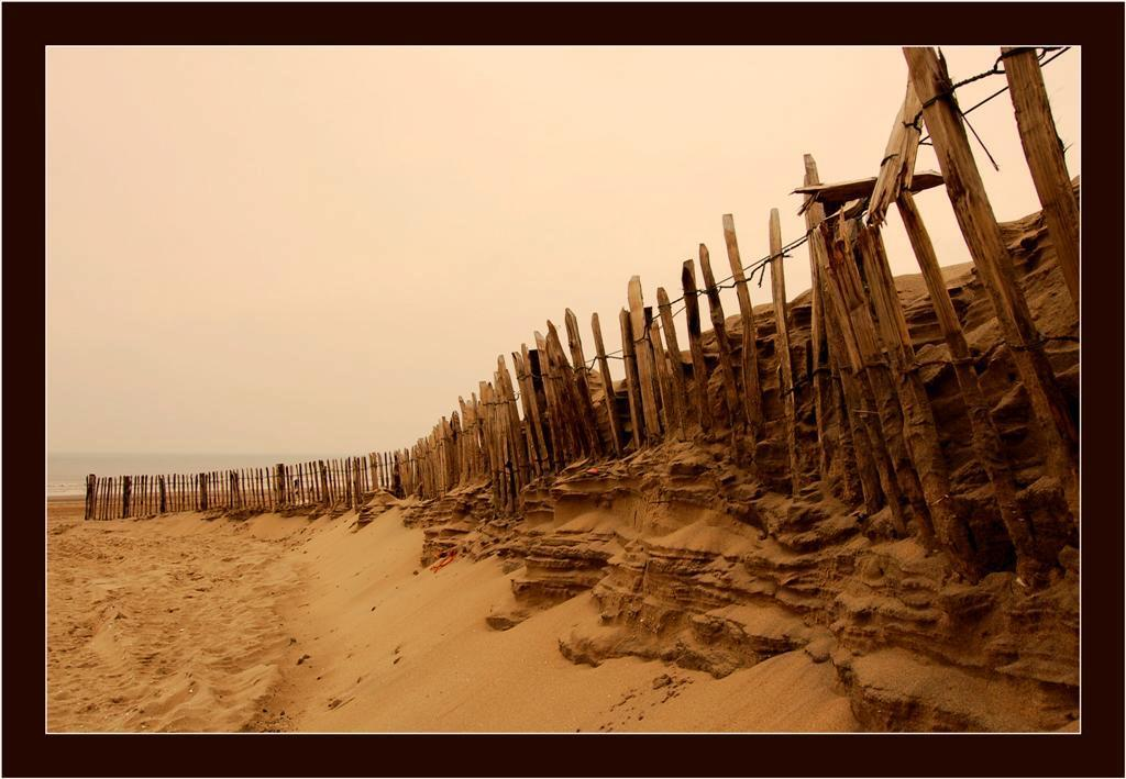 Zandlaagjes... - Op het strand bij Noordwijk aan zee trof ik deze paaltjes aan. De paaltjes opzich waren niet heel bijzonder maar ik vond het zand wat er tegenaan gew - foto door Foto_Marleen op 02-03-2009 - deze foto bevat: strand, zee, wind, hout, noordwijk, zand, paaltjes, foto-marleen