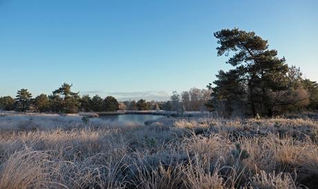 Winterlandschap.