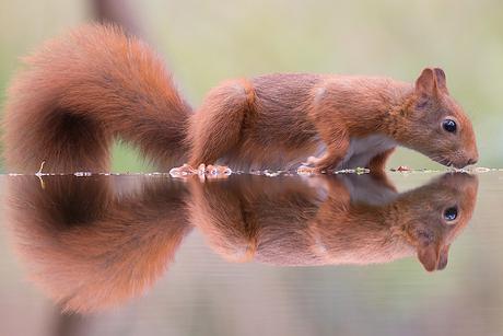 Spiegeltje Spiegeltje Spiegeltje!!