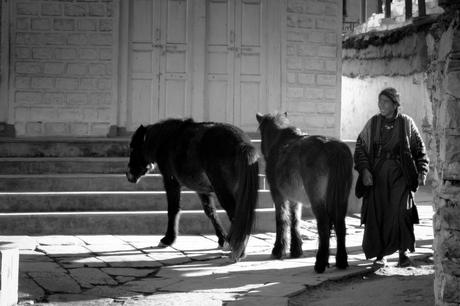 Het leven zoals het is in Nepal