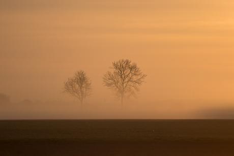Eenvoud in de mist