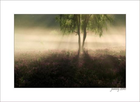 Joanny4-september morning-4