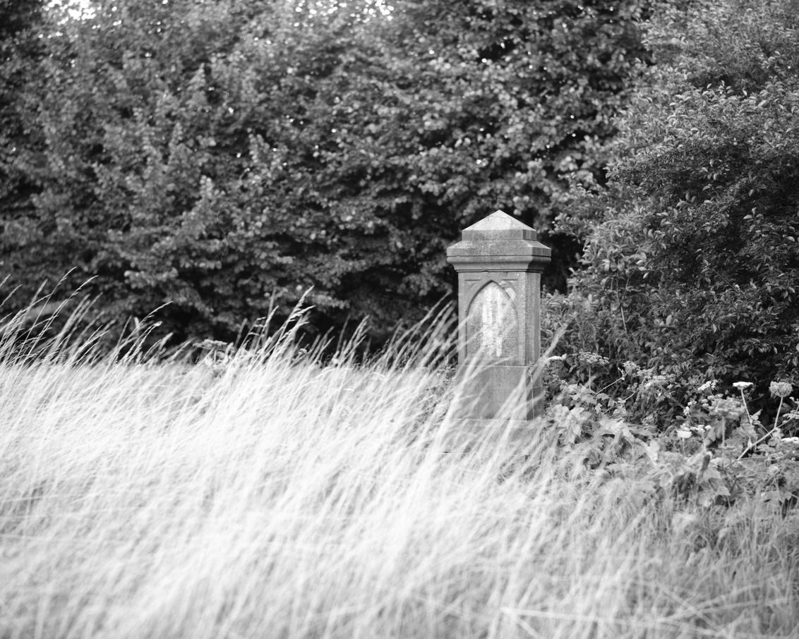 Grafsteen bij verlaten kerk, Heveskes - Pentax 6x7 150mm + Ilford delta 100 - foto door RPiNut op 13-02-2018 - deze foto bevat: natuur, landschap, graf, verlaten, delfzijl, farmsum, heveskes