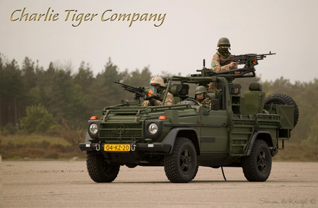 Charlie Tiger Company