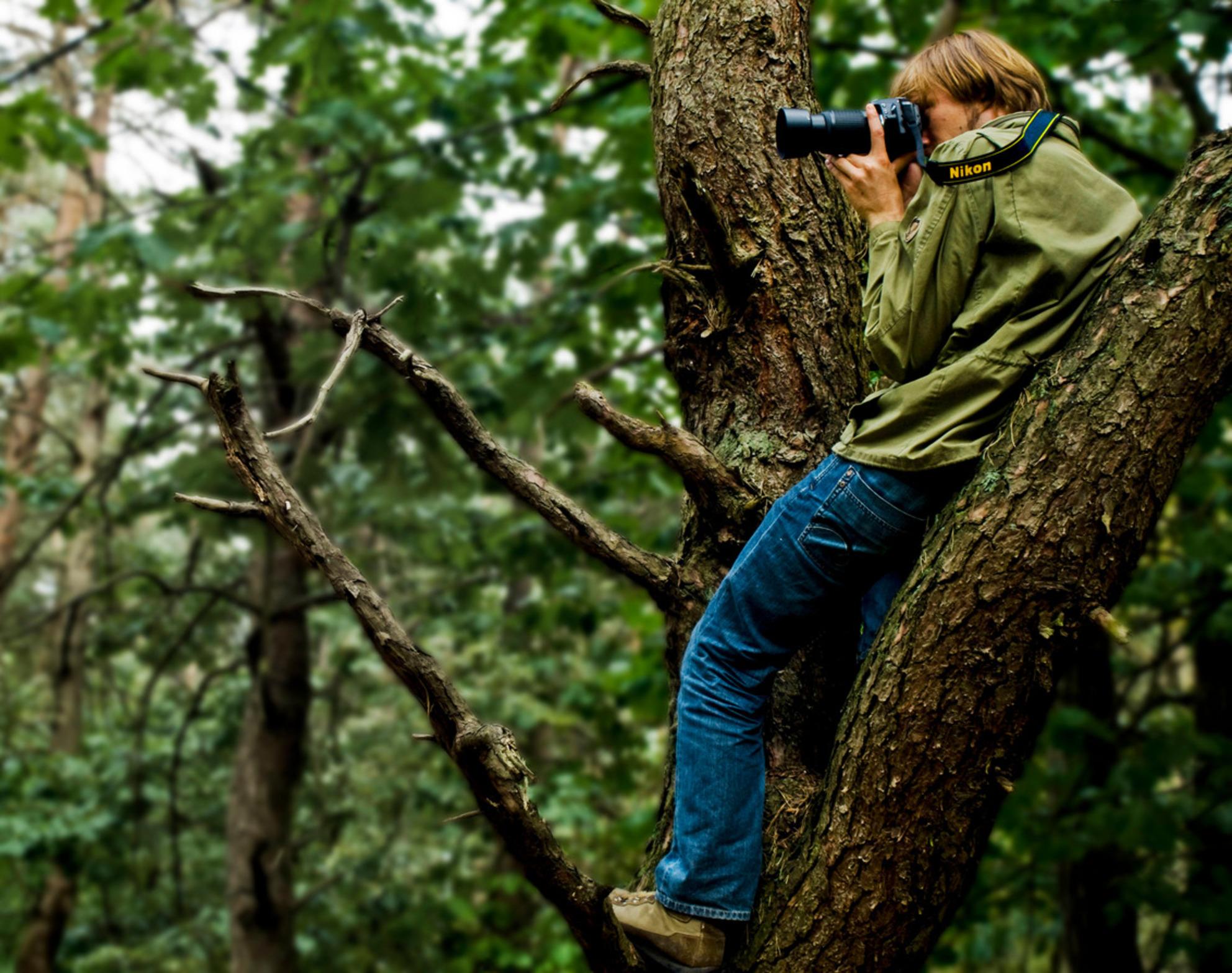 Sense of Nature - - - foto door anls op 30-08-2009
