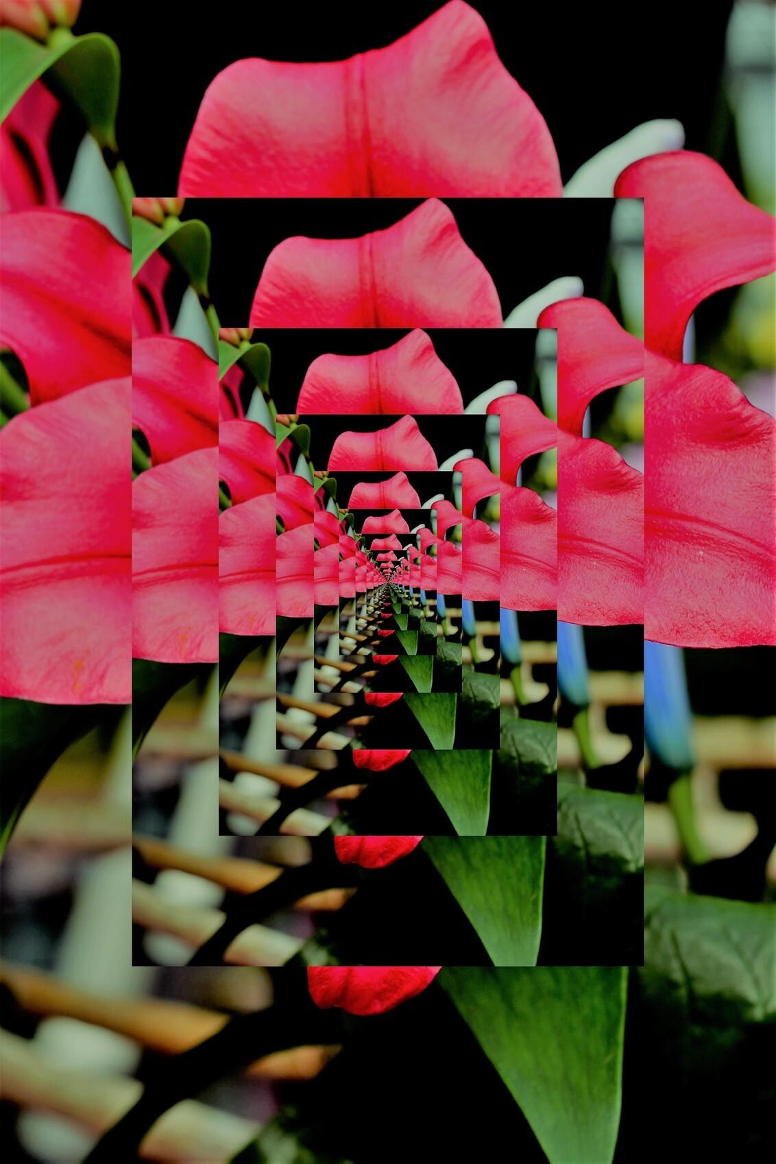 035 - dit is een bloem gewest dat heb ik in d 3 gemakt als kunst - foto door ltomey op 07-01-2021