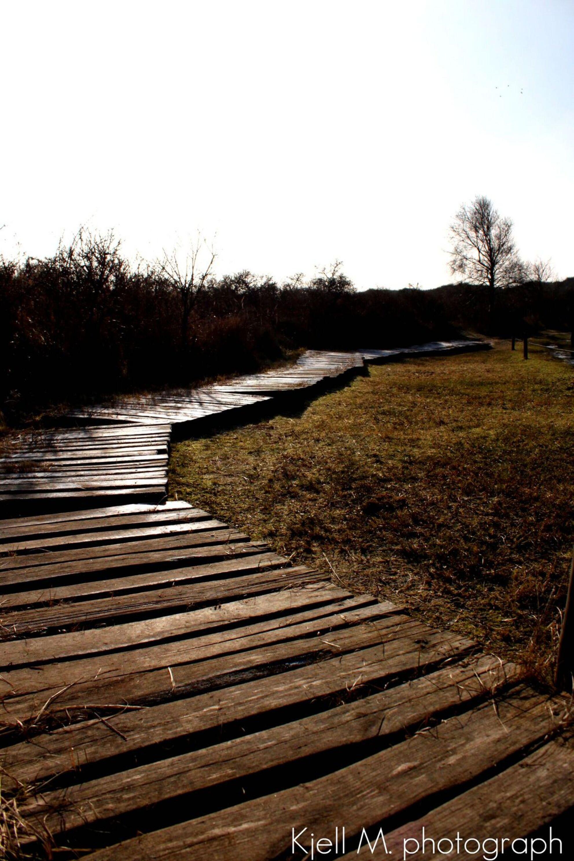 follow the road - deze foto werd genomen in een natuur reservaat aan zee - foto door kjellmargodt op 29-04-2011 - deze foto bevat: zee, duinen, pad, zand, canon, leiden, weg, volgen, eos 500d - Deze foto mag gebruikt worden in een Zoom.nl publicatie