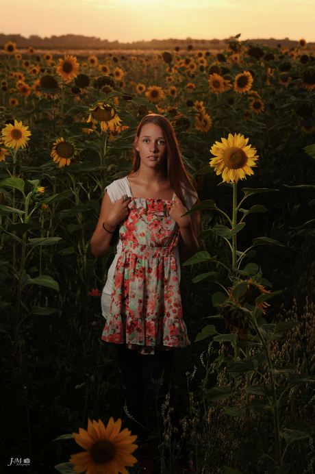 what should I wear between sunflowers