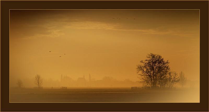 Zonsopkomst op het platteland-2 - Dezelfde vrijdagmorgen... Door de vage mist in de verte en de oranje gekleurde lucht kreeg je zo'n vage foto. In de verte zie je het kerkje van Wijn - foto door Foto_Marleen op 11-02-2009 - deze foto bevat: lucht, kleur, platteland, mist, zonsopkomst, foto-marleen