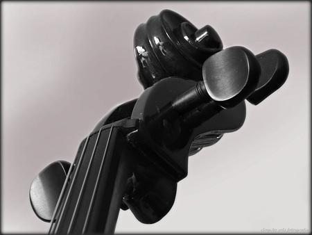 krullekop... - Heb je je nooit eens afgevraagd waarom er een krul in de kop van het stemgedeelte van viool, cello en contrabas zit…. Nou dan kan ik je het volgende - foto door close.to.yoU.fotografie op 14-03-2014 - deze foto bevat: muziek, verhaal, krul, cello, zw/w