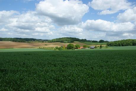uitzicht limburg