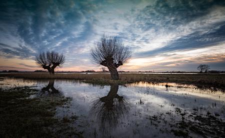 DSC_2755 - Het wegtrekkende water na de hoge waterstand aan de IJssel geeft mooie beelden - foto door Mknikker op 25-02-2018 - deze foto bevat: lucht, wolken, zon, water, panorama, licht, winter, ijssel, avond, zonsondergang, spiegeling, landschap, tegenlicht, bomen, rivier, nacht, polder, wilg, knotwilg, lange sluitertijd, vreugderrijkerwaard