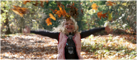 Plezier in het herfstbos