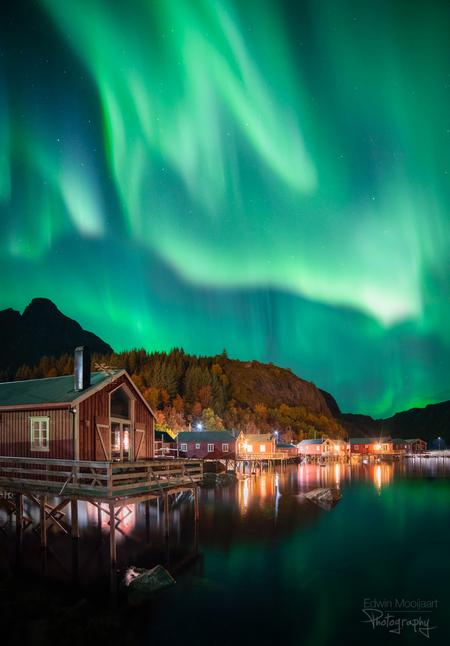 Dancing Aurora - Dancing Aurora  Met je eigen ogen het noorderlicht boven je zien 'dansen' is een bizar gezicht. We hadden avond vol met noorderlicht alle kanten op - foto door EdwinMooijaart op 14-10-2019 - deze foto bevat: herfst, reflectie, bergen, nacht, noorwegen, lofoten, nusfjord, noorderlicht, aurora