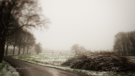 Moody winter road - Er viel sneeuw, maar helaas niet veel. Wel net genoeg om sfeervolle winterplaatjes te kunnen maken. - foto door meneerlex op 18-01-2021 - deze foto bevat: lucht, panorama, natuur, licht, sneeuw, winter, ijs, landschap, mist, bomen