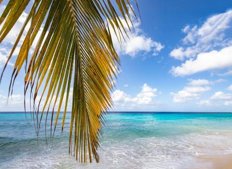 Kokomo Beach, Curacao