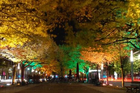 Berlijn - Festival of Lights - Unter den Linden 2