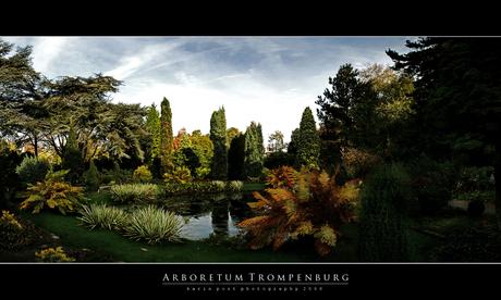 arboretum_trompenburg