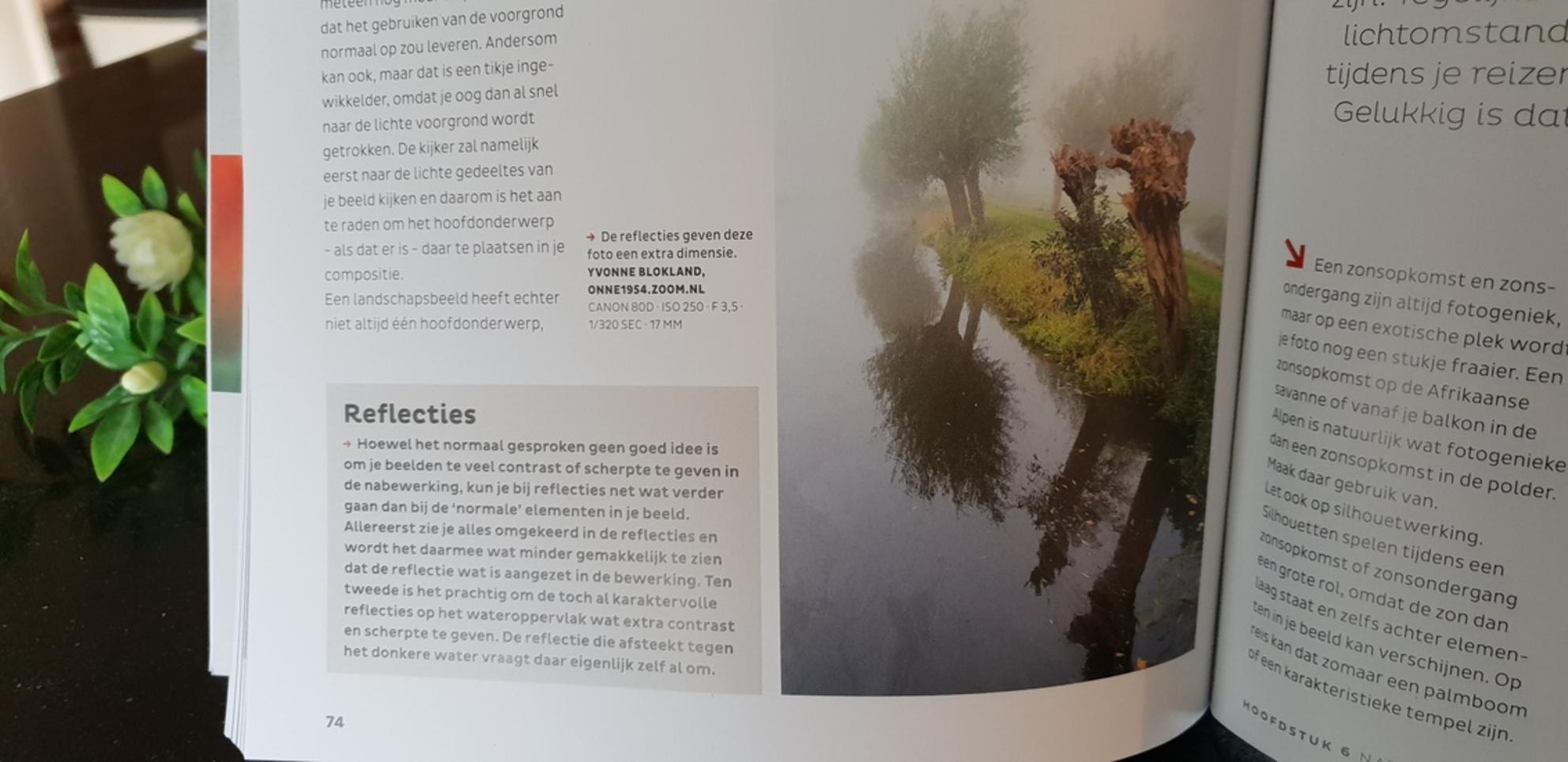 publicatie - zo leuk, mijn foto is opgenomen in een ZOOM PRAKTIJKREEKS boek , t w Natuurlijk licht. Best wel leuk...... - foto door onne1954 op 03-12-2020 - deze foto bevat: kleur, licht, beeld, spiegeling, reflecties, details - Deze foto mag gebruikt worden in een Zoom.nl publicatie