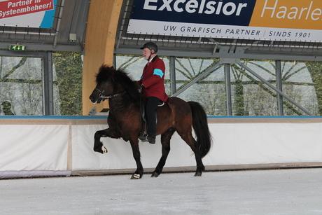 Horses On Ice 2013