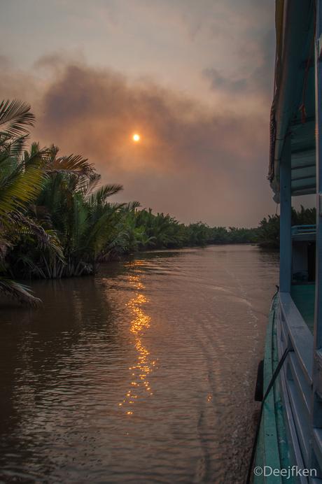 Jungle Borneo