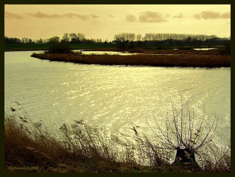 Vogelreservaat Linge